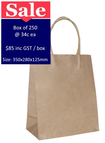 Picture of Brown Paper Bags Large