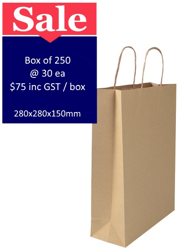 Picture of Brown Paper Bags Medium