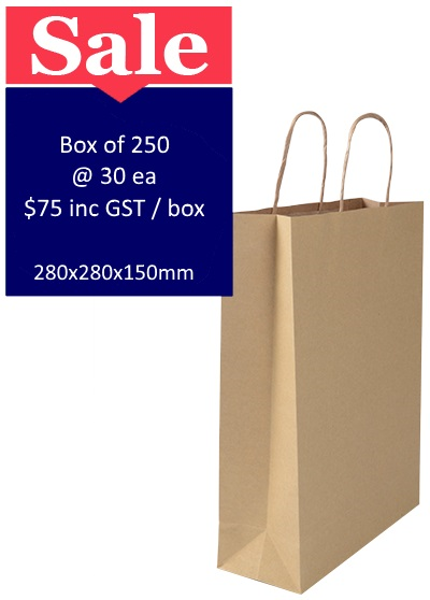 Brown Paper Bags Medium